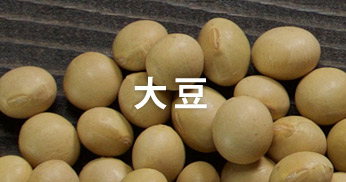 藤崎産品 大豆