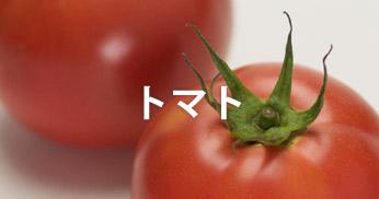 藤崎産品 トマト