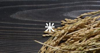 藤崎産品 お米